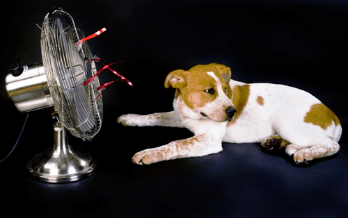 History of Air Conditioning